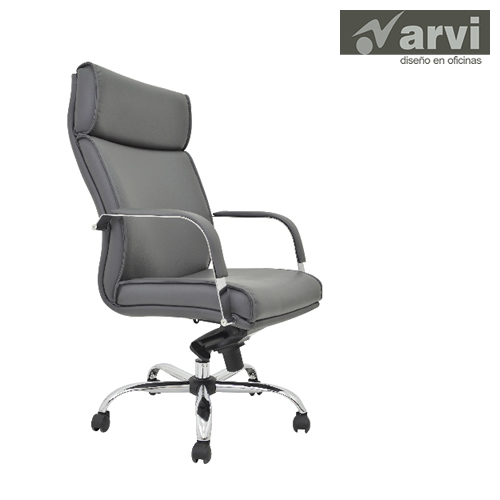 ARVI Directivo